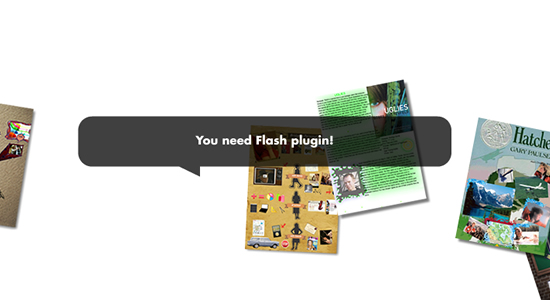 You need Flash plugin!